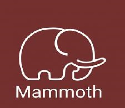 Mammonth